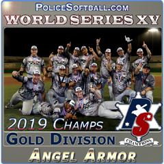2019 World Series Gold Division Champs